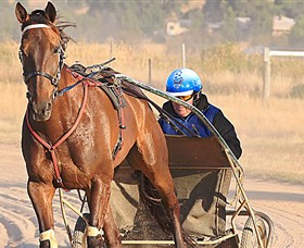 Ballarat  District Trotting Club - Geraldton Accommodation