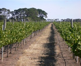 Mount Beckworth Wines - Geraldton Accommodation
