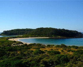 Broulee Island Walk - Geraldton Accommodation