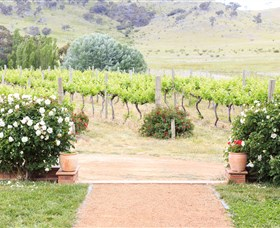 Brindabella Hills Winery - Geraldton Accommodation