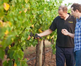 Fratin Brothers Vineyard - Geraldton Accommodation