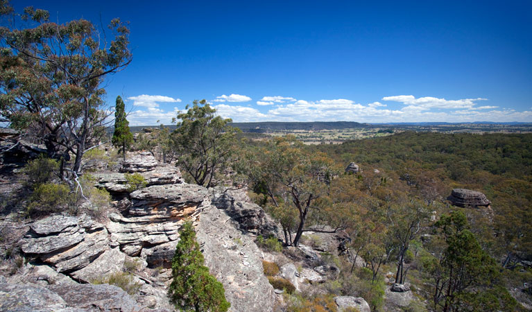 Munghorn Gap Nature Reserve - Geraldton Accommodation