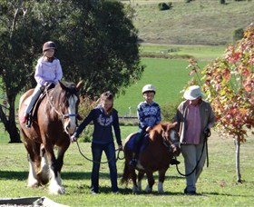 Bathurst Farm Experience - Geraldton Accommodation