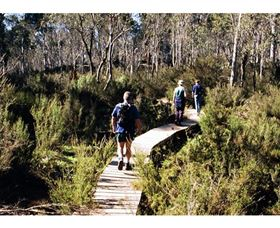 Hume and Hovell Walking Track - Henry Angel Trackhead - Geraldton Accommodation