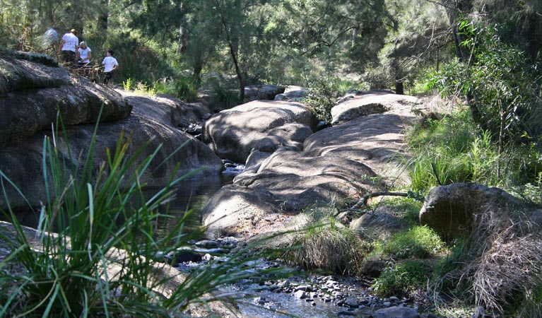 Towarri National Park - Geraldton Accommodation