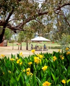 Charleville - Graham Andrews Parklands - Geraldton Accommodation
