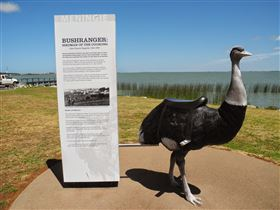 Birdman of the Coorong - Geraldton Accommodation