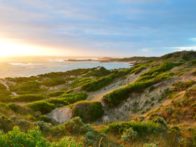 Beachport Conservation Park - Geraldton Accommodation