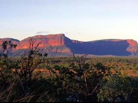 Blackdown Tableland National Park - Geraldton Accommodation