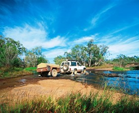Rinyirru Lakefield National Park CYPAL - Geraldton Accommodation
