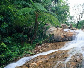 Finch Hatton Gorge - Geraldton Accommodation