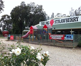 The Big Strawberry - Geraldton Accommodation
