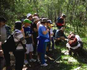 Warrumbungle National Park Discovery Program - Geraldton Accommodation