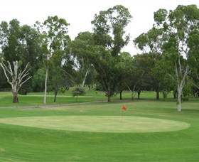 Moree Golf Club - Geraldton Accommodation