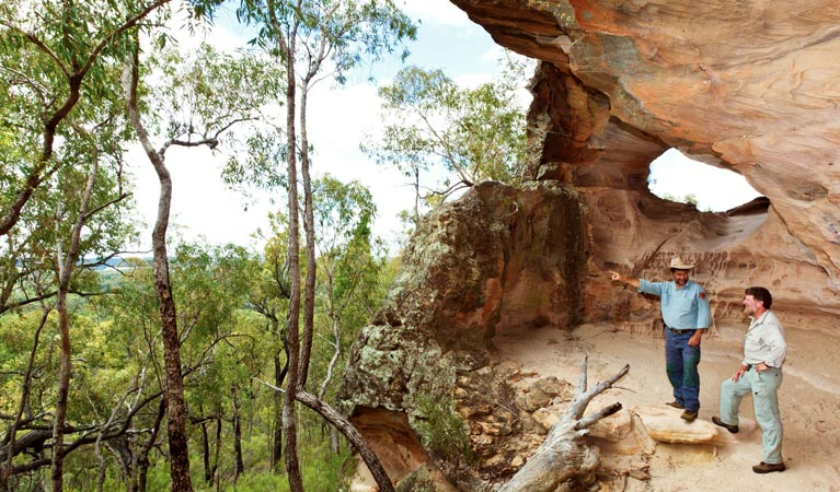 Pilliga National Park - Geraldton Accommodation