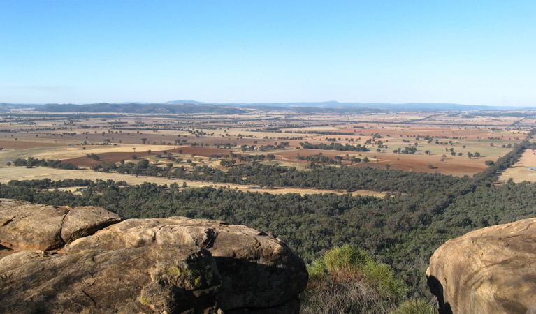 Basin Gully to Eualdrie lookout track - Geraldton Accommodation