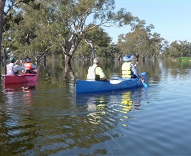 Doodle Cooma Swamp - Geraldton Accommodation