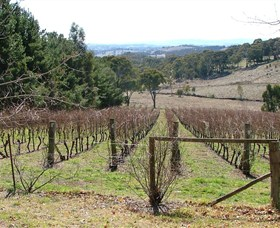Habitat Vineyard - Geraldton Accommodation