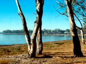 Lake Broadwater Conservation Park - Geraldton Accommodation