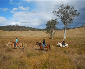Chapman Valley Horse Riding - Geraldton Accommodation