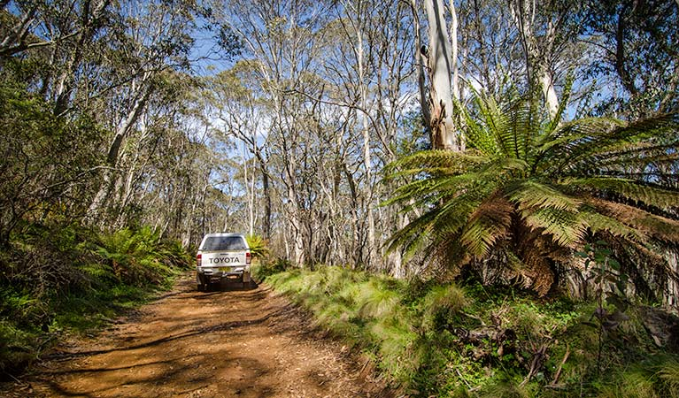 Barrington trail - Geraldton Accommodation