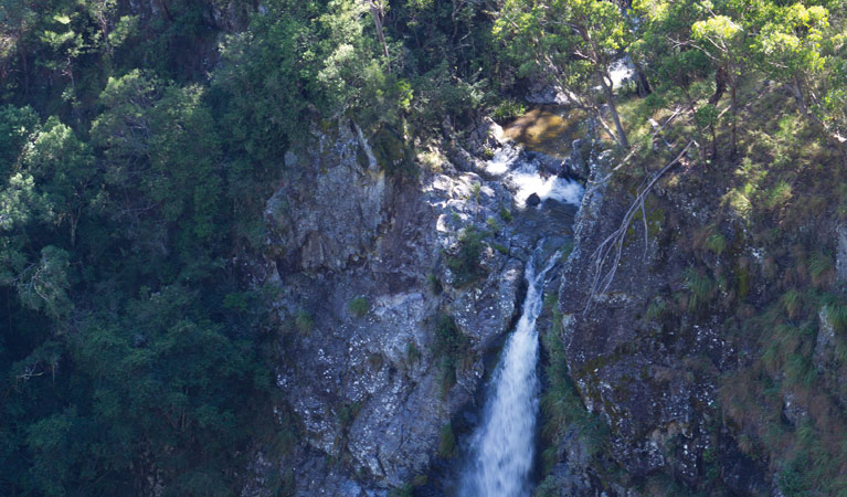 Lyrebird Falls walking track - Geraldton Accommodation