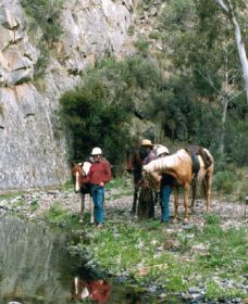 Yarramba Horse Riding - Geraldton Accommodation