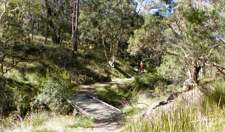 Wollomombi walking track - Geraldton Accommodation