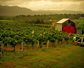 Around Hermitage Wine and Food Trail Hunter Valley - Geraldton Accommodation