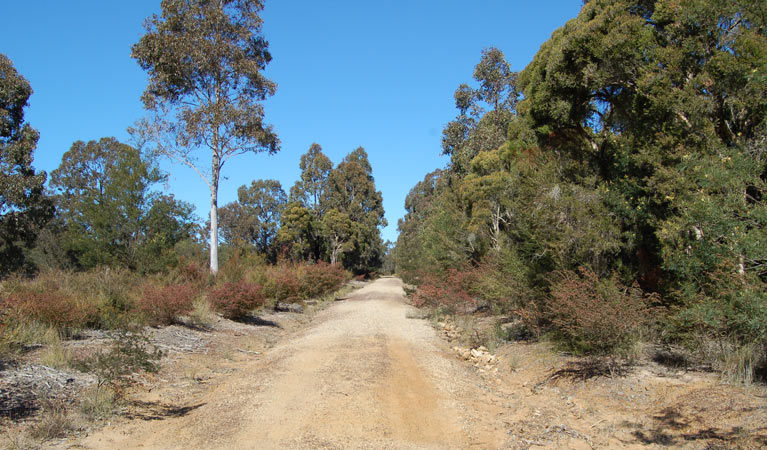 Werakata National Park - Geraldton Accommodation