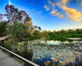 Berrinba Wetlands - Geraldton Accommodation