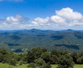 Griffith Lookout
