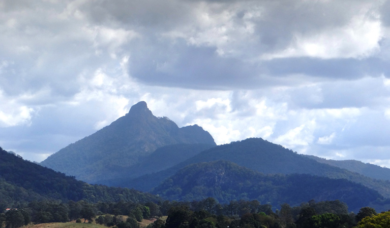 Wollumbin National Park - Geraldton Accommodation