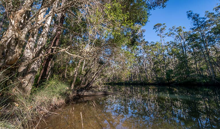 Queens Lake Nature Reserve - Geraldton Accommodation
