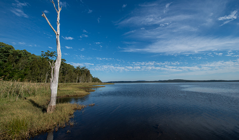 Lake Innes Nature Reserve - Geraldton Accommodation