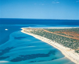 Monkey Mia - Geraldton Accommodation
