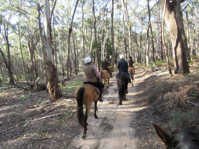 Silver Brumby Trails - Geraldton Accommodation