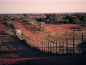 Tri State Safaris - Geraldton Accommodation