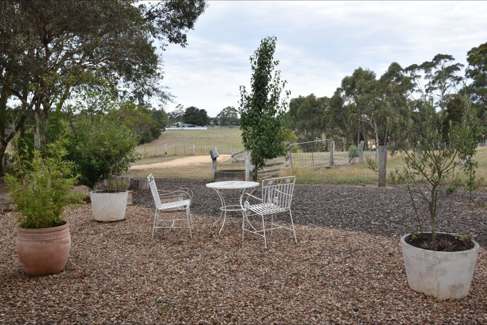 Cygnet Park Country Retreat - Geraldton Accommodation