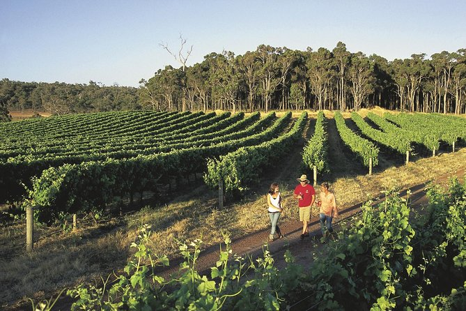 Margaret River Caves Wine and Cape Leeuwin Lighthouse Tour from Perth
