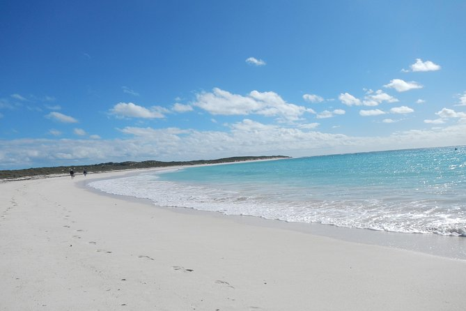 Abrolhos Islands Shipwreck Air and Land Tour from Geraldton - Geraldton Accommodation
