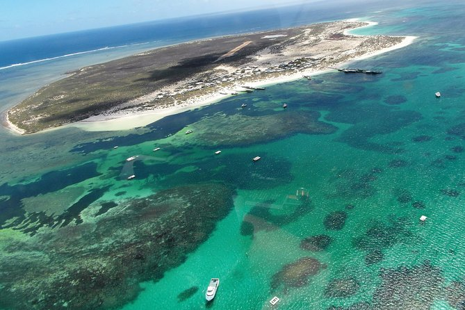 Abrolhos Flyover with Morning Tea on East Wallaby Island - Geraldton Accommodation