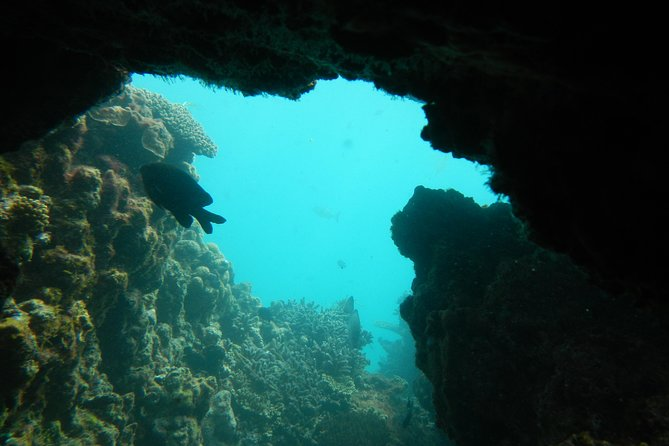 Half-Day Abrolhos Islands Shipwreck Air and Land Tour from Geraldton