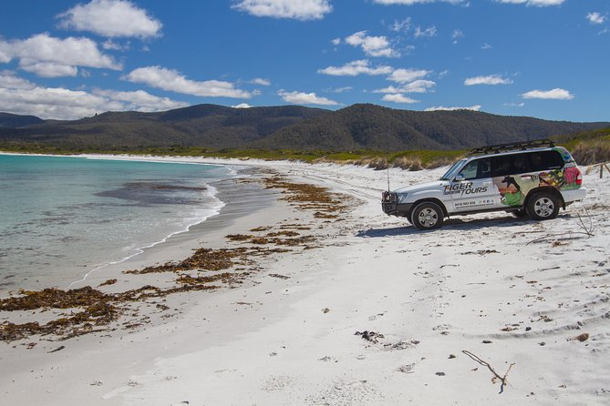 4X4 and Lunch Half Day Bicheno Coastal Mountain - Geraldton Accommodation
