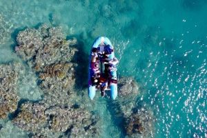 Glass-bottom boat tour with Whitehaven Beach - Geraldton Accommodation