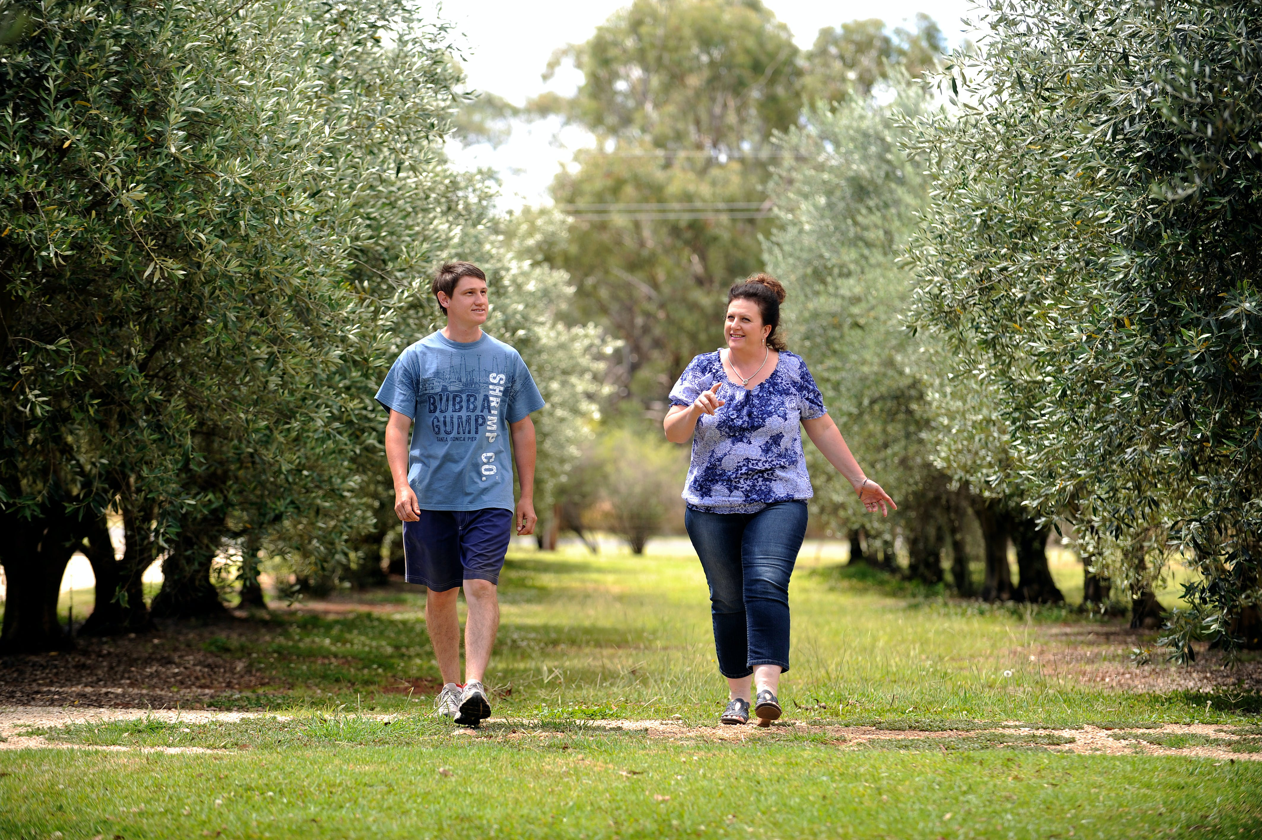 Olives of Beaulieu - Geraldton Accommodation