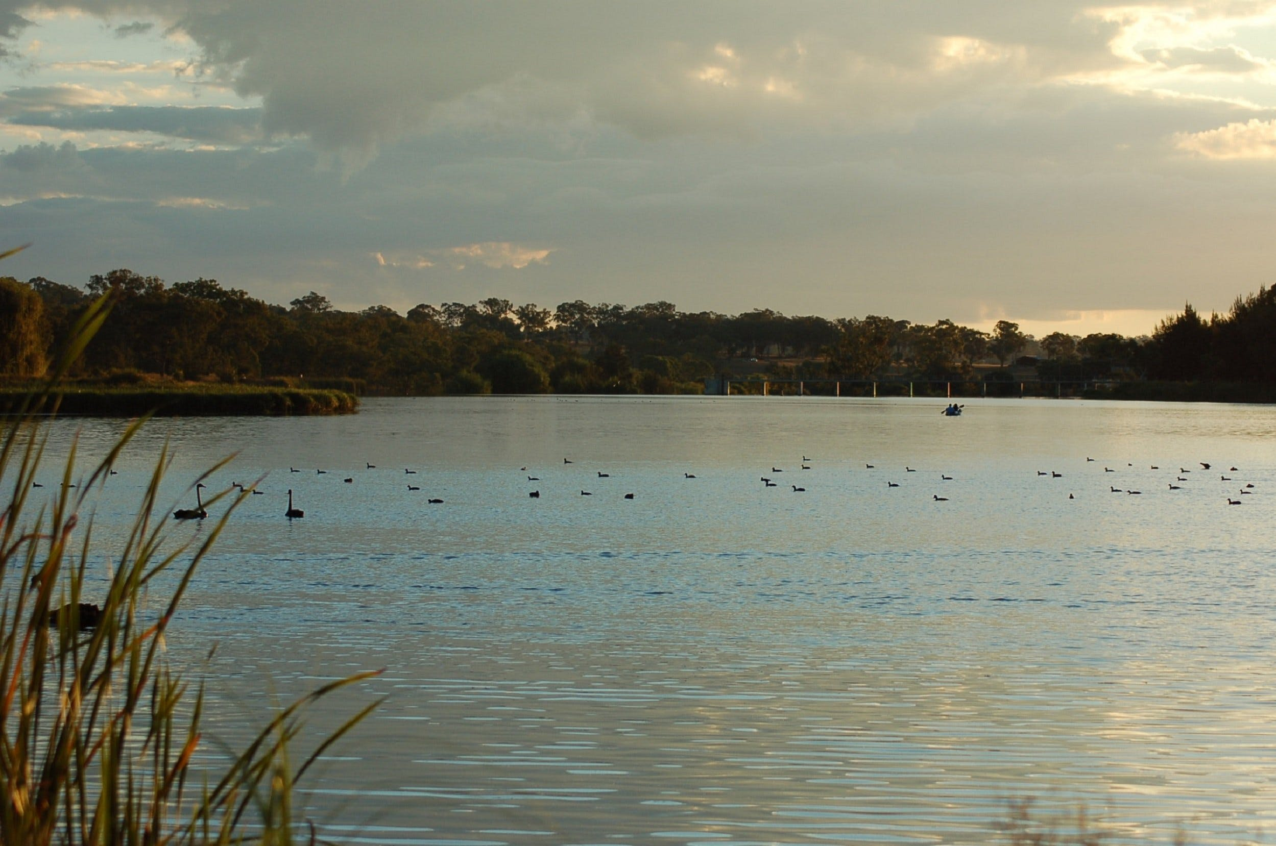 Lake Inverell Reserve - Geraldton Accommodation