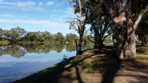 Murray River National Park - Katarapko - Geraldton Accommodation