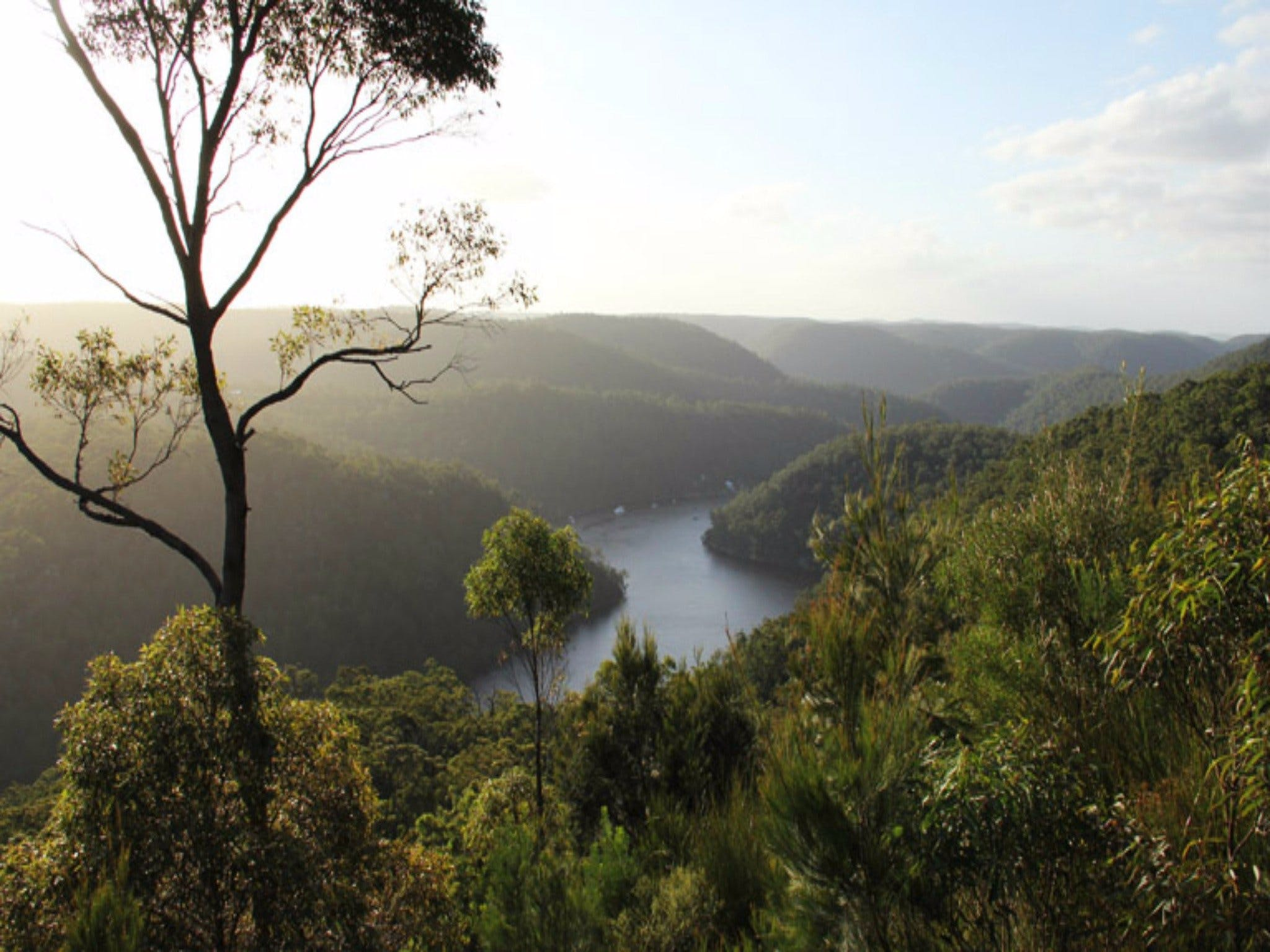 Berowra Valley National Park - Geraldton Accommodation