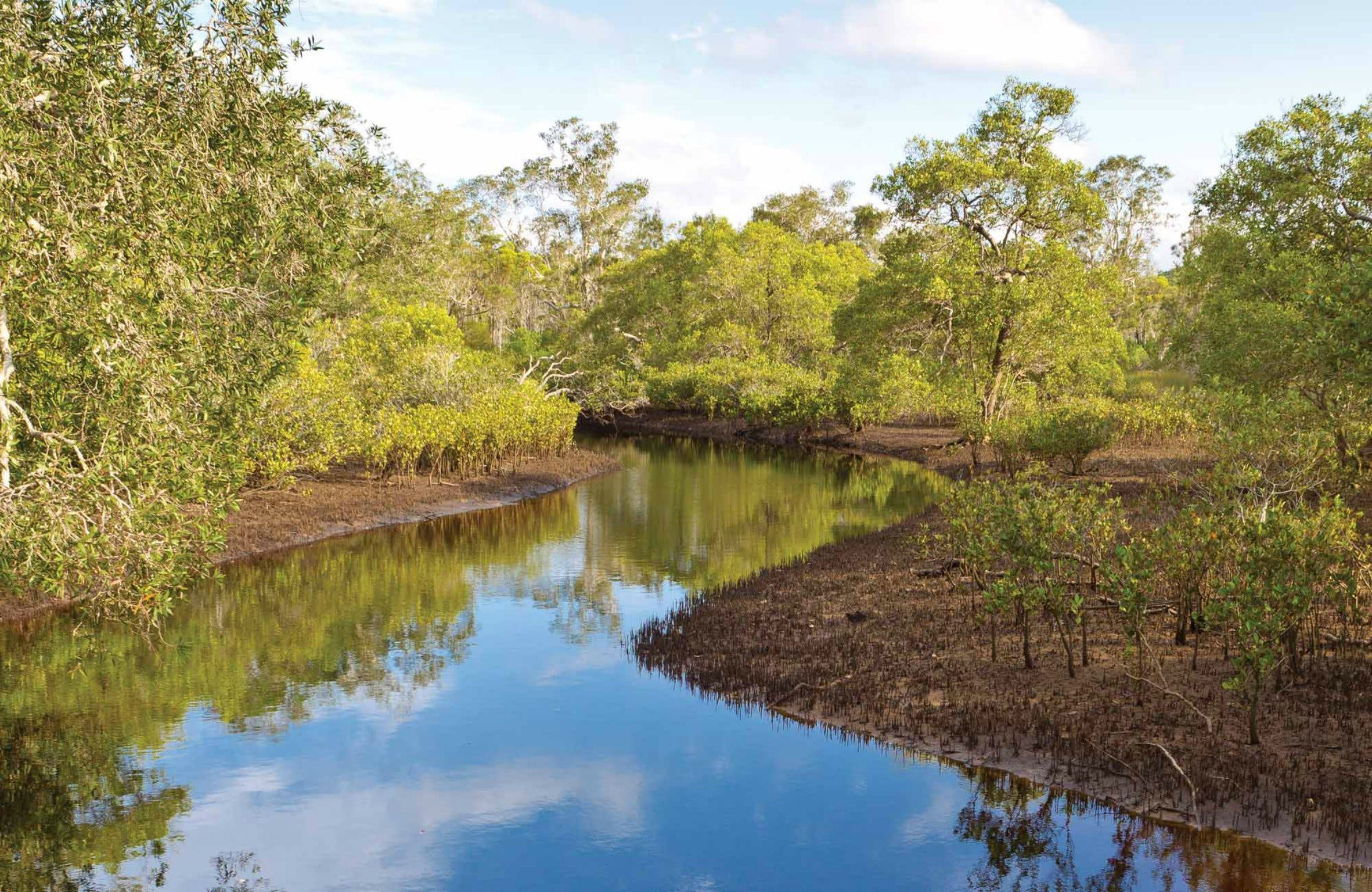 Canoe Evans River Paddle Route - Geraldton Accommodation